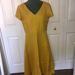 Brand New Size 8 Ann Taylor Dress✨💫
